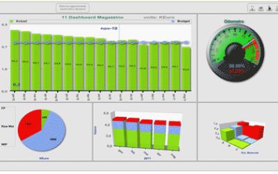 Business intelligence: strumento operativo di budgeting e di reporting